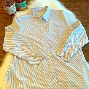 Lysse Shiffer Button Up Blue White Stripe